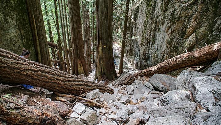 Hiking guide: The Stawamus Chief, Squamish