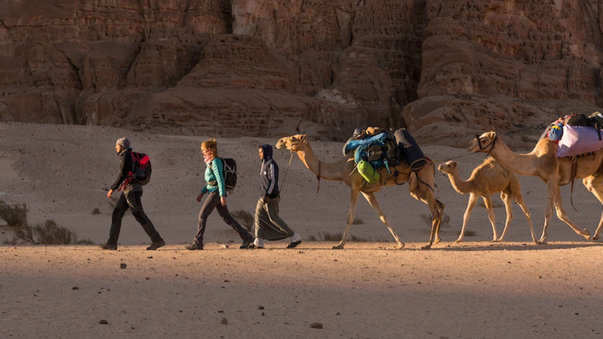 Monday Wanderlust: Walking with the Bedouin through the Sinai Peninsula