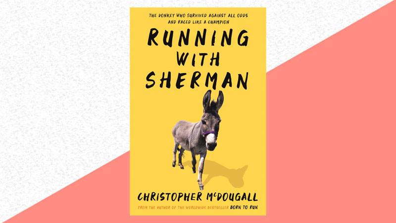 The ultimate runner gift guide